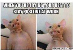 Employee Engagement Software Nurse humor - staying positive at work.Nurse humor - staying positive at work. Kpop Memes, Memes Humor, Funny Memes, Funny Work Meme, Cat Memes, Funny Cute, The Funny, Daily Funny, Animal Memes