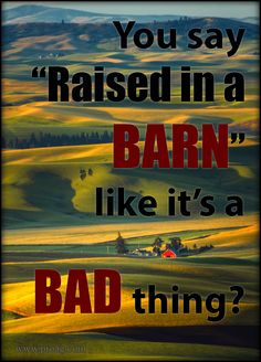"""You say, """"You act like you were raised in a barn"""" like's it a bad thing? Some of life's most important lessons were learned in a barn..."""
