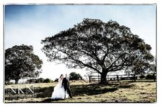 Danielle & Adrian had their fairytale wedding at Albert River Wines with kissing lips and moustaches - Albert River Wines Wedding Photography Kissing Lips, Vineyard Wedding, Wines, Country Roads, Wedding Photography, Weddings, Park, Wedding, Parks