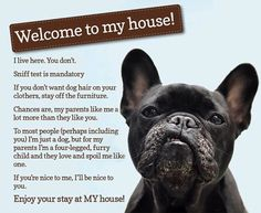 French Bulldog 'Rules of the House', So true!