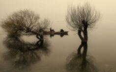 "Photo ""fog"