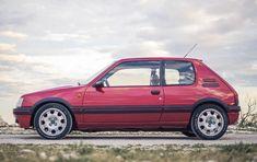 1988 Peugeot 205 GTI 1.9