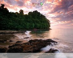 Experience 4% of the world's ENTIRE biodiversity in one place - The Osa Peninsula, Costa Rica.