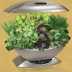 Aero grow gardening indoors must get this!