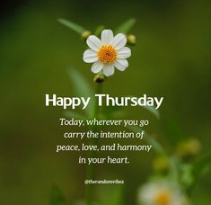 Happy Thursday! Today, wherever you go carry the intention of peace, love, and harmony in your heart. #Thursdaymorningwishes #Thursdaypositivequotes #Happythursdayquotes #Thursdayquotesforwork #Goodmorningthursday #Morningthursdayquotes #Morningwishesquotes #Goodmorningwish #Beautifulmorningwishes #Thursdayquotes #Thursdaymorningquotes #Thursdaysayings #Goodmorningquotes #Goodmorningsayings #Positiveenergy #Inspirationalmorningquotes #Dailyquotes #Everydayquotes #Instaquotes #therandomvibez Thursday Morning Quotes, Happy Thursday Quotes, Morning Wishes Quotes, Good Morning Wishes, Good Morning Quotes, Motivational Quotes For Love, Work Quotes, Positive Quotes, Inspirational Quotes