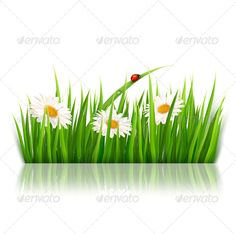 Nature Background With Green Grass And Flowers GraphicRiver Vector Fully Editable Objects