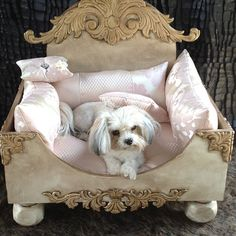 Bear needs this to match mine! Pet bed with scrolling detail and pink upholstered pillows.  Product: Pet bedConstruction Material: Wood and iro...
