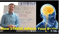 In this video, Dr. Berg explains how stress affects your brain.  https://www.youtube.com/watch?v=5olzMcMCCkM