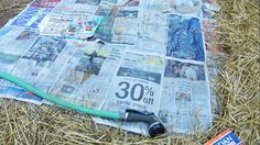 Newspaper keeps weeds away!  Wet some newspapers. Put layers around the plants overlapping as you go,  cover with mulch and forget about weeds. Weeds will get through some gardening plastic, they will not get through wet newspapers.