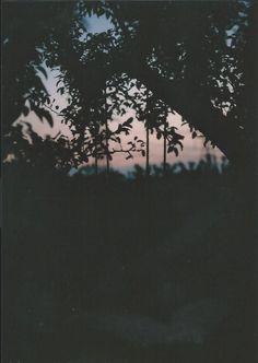 Lauryn's Notebook: 35mm film.