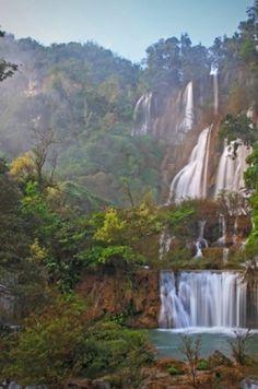 Esőerdők