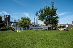 Empire Fulton Ferry Lawn at Brooklyn Bridge Park.
