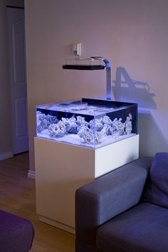 TheDoogan's shallow rimless tank. - Reef Central Online Community