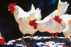 Watercolor Chickens - so sorry, can't find the artist. I love the intensity of this, the starkness, but it's feathery and soft, too. This is a great piece, and it's watercolor!!