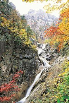KOREA+seorak+mountain_설악산