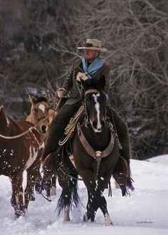 Cowboy and horses in the snow. - photo by Scott Wheeler Cowboy Horse, Cowboy And Cowgirl, Western Riding, Western Art, Ken Parker, Horse Barns, Horses, Cowboy Photography, Cowboy Pictures