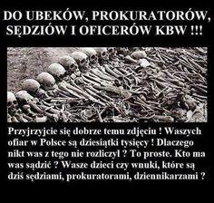 Visit Poland, World War, Humor, History, Pictures, Statistics, Eagles, Facebook, Twitter