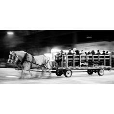 "One of two ""Hop on Hop Off"" Horse Drawn Wagons. What fun! #allisbright #winterfestival #Yeg #urbanyeg #yegdt #igyegers #IGyeg #exploreedmonton #explorecanada #lifeincanada #travelalberta #unlimitedcanada #nofilter"