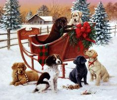 James Killen Christmas Sleigh Puppy Print-Signed x 14 - The best image about di furniture for your taste You are looking for something and you have not - Boxed Christmas Cards, Christmas Scenes, Christmas Gifts For Women, Christmas Animals, Christmas Greeting Cards, Christmas Greetings, Winter Christmas, Vintage Christmas, Christmas Ornaments