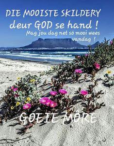 Cape Town we come Monday Morning Blessing, Morning Blessings, Good Morning Wishes, Lekker Dag, Evening Greetings, Goeie Nag, Goeie More, Afrikaans Quotes, Morning Greetings Quotes