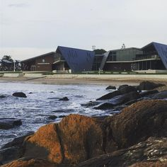 A HUGE list of things to do in Devonport and Tasmania's North West including food, museums, hiking, wildlife, beaches, parks and lots more. Stuff To Do, Things To Do, Tasmania, North West, Museums, Beaches, Opera House, Parks, Wildlife
