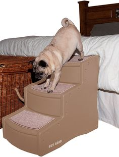 Pet Gear Easy Step III Pet Stairs, 3 Step For Cats And Dogs *