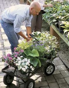 The 10 Most Common Gardening Mistakes