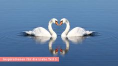 Inspirationen für die Liebe Teil 5: Glückliche Beziehungen leben von der geteilten Freude