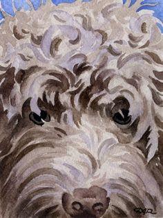 LABRADOODLE Dog Art Print Signed by Artist DJ Rogers