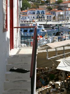 A cat lounges on the stone steps amidst the bustle of the cafe and marina below. Taken on the island of Hydra, Greece.