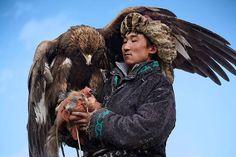 La chasse avec des aigles en Mongolie