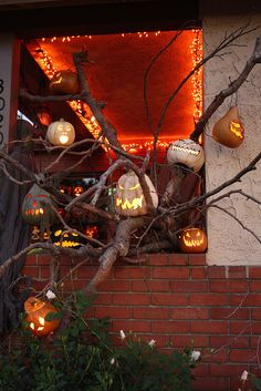 Hang pumpkins and lights in you trees to impress your trick or treaters this Halloween. #HalloweenLights #HalloweenDecorations #HalloweenPumpkins #MiniLights