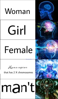 38 Hilarious Expanding Brain Meme to give your Brain a Laugh Dose – sFwFun Memes Humor, New Memes, Man Humor, Jokes, Stupid Memes, Stupid Funny, Funny Men, Funny Stuff, Funny Relatable Memes