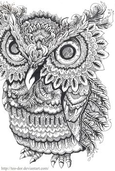 Owl Coloring pages colouring adult detailed advanced printable Kleuren voor volwassenen coloriage pour adulte anti-stress kleurplaat voor volwassenen