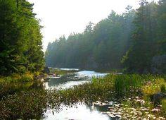 Kilarney Provincial Park, Georgian Bay, Ontario Photo Look, Georgian, Ontario, Trail, River, Park, Outdoor, Outdoors, Georgian Language