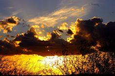 golden sunset by Identifyed-Khaos