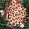 Party of Four: Super-Fast 4-Fabric Throw Quilt Pattern