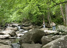 The best Gatlinburg picnic areas