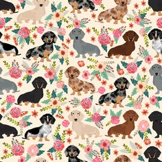 dachshund floral vintage flowers doxie f custom wallpaper by petfriendly for sale on Spoonflower Floral Vintage, Vintage Flowers, Pink Flowers, Vintage Style, Dog Wallpaper, Pattern Wallpaper, Dachshund Art, Daschund, Dog Tattoos