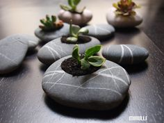 zen garden pottery beach stone flower planter pebble by Mihulli