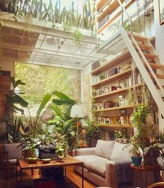 Reposted from Living room goals 😍 urban jungle vibes by - Plant Games, Mug Design, Budget Home Decorating, Decorating Bedrooms, Decorating Ideas, Best Decor, Living Room Goals, Living Area, Living Rooms