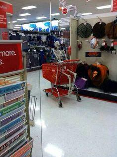 Walmart Customer Service Call Center. I believe it! | Life ...