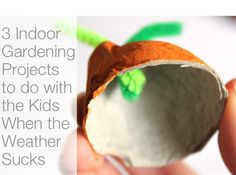 3 great indoor gardening projects to do with the kids when the weather sucks