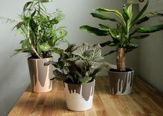 DIY painted planters