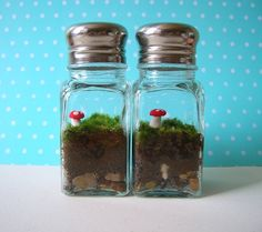make a miniature decoration terrarium from your old salt & pepper shakers!