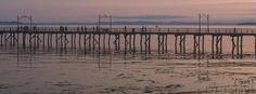 White Rock Pier  #SummerInSurrey #SurreyBC Surrey, Summer Fun, Rock, Beach, Water, Outdoor, Gripe Water, Outdoors, Stone