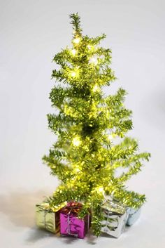 lighting up tiny trees battery operated lightschristmas