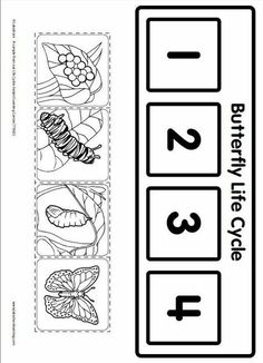 Life Cycle Learning Game from Lakeshore Learning: Children learn all about the life cycle of a butterfly! by dana Life Cycle Learning Game from Lakeshore Learning: Children learn all about the life cycle of a butterfly! by dana Kindergarten Science, Preschool Activities, Butterfly Life Cycle, Lifecycle Of A Butterfly, Stages Of A Butterfly, Lakeshore Learning, Worksheets For Kids, Science Worksheets, Life Cycles