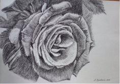 Картины :: Душа розы | Купить картину у художника