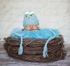 SET Aqua Fur and Wood Branch Nest Owl Bird Photography Prop Newborn Baby - Beautiful Photo Props